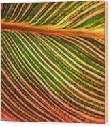 Leafscape 2 Wood Print