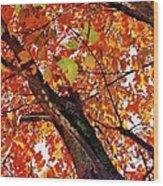 Leafward Wood Print