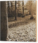 Leafy Autumn Woodland In Sepia Wood Print