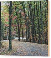 Leafy Trail Wood Print