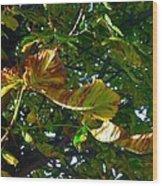 Leafy Tree Image Wood Print