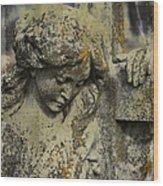 Lean On Me Wood Print by Terry Rowe