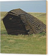 Lean To The Wind Wood Print