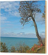 Leaning Tree Over Lake Wood Print