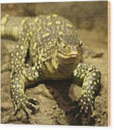 Leapin Lizards Wood Print