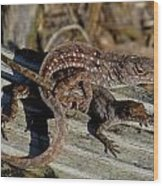 Leaping Lizards Wood Print