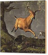 Leaping Stag Wood Print
