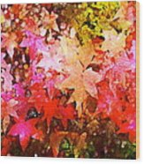 Leaves 11 Wood Print