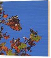 Leaves 3 Wood Print