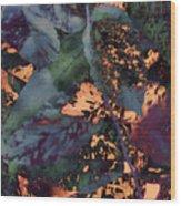 Leaves Abstraction IIi Wood Print