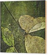 Leaves Afloat Wood Print