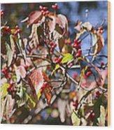 Leaves And Berries Wood Print