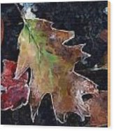 Leaves And Frost Wood Print