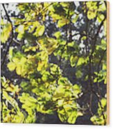 Leaves Blowing Wood Print