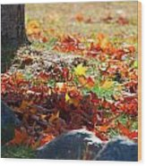 Leaves Falling Wood Print
