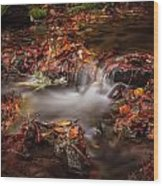 Leaves In The Creek Wood Print