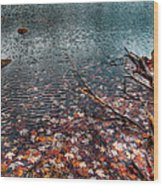 Leaves In The Lake Wood Print