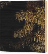 Leaves In The Night I Wood Print
