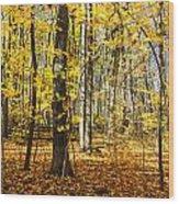 Leaves In The Woods Wood Print