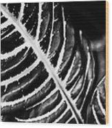 Leaves Of Life Wood Print