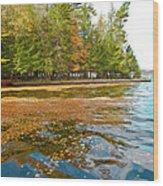 Leaves On Fourth Lake Wood Print