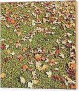 Leaves On Grass Wood Print