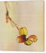 Leaves On Linen Wood Print