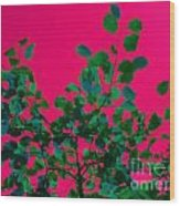 Leaves On Pink Back Lit Sky Abstract Wood Print