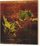 Leaves On Texture Wood Print