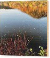 Leaves On The Lake Wood Print