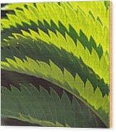 Leaves Patterns Wood Print by Eva Kato