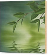 Leaves Reflecting In Water Wood Print by Aged Pixel