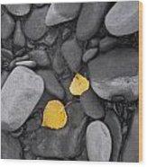 Leaves With Rocks Wood Print
