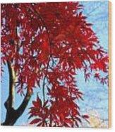 Leaves0591 Wood Print