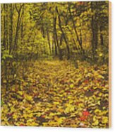 Leaving The Way Wood Print by Peter Coskun
