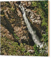 Leavitt Falls  Wood Print