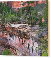 Ledge At Emerald Pools In Zion National Park Wood Print