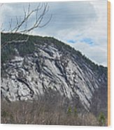 Ledge In New Hampshire Wood Print