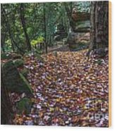 Ledges Overlook Trail 5 Wood Print