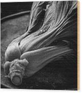Leeks Wood Print