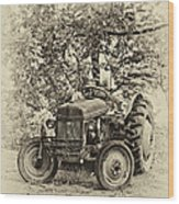 Left Fielder Antique Wood Print
