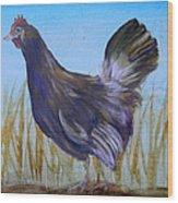 Legbar Chicken Wood Print