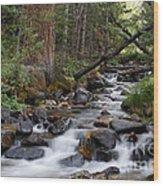 Lehman Creek In Great Basin National Park Wood Print