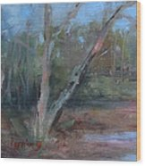 Leiper's Creek Study Wood Print