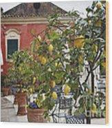 Lemon Trees On A Villa Terrace Wood Print by George Oze