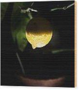 Lemon's Planet Wood Print