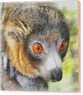 Lemur 004 Wood Print
