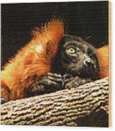 Lemur In Longing Wood Print