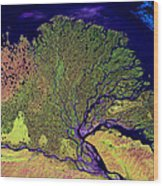 Lena Delta Wood Print