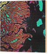 Lena River Delta Russia Wood Print